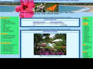 Chasta.com, location Guadeloupe