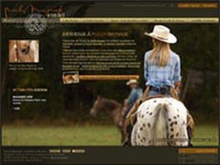 Puech Maynade, chevaux et équitation western en France