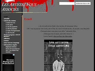 Les Artistes Fous associés, art et culture en francophonie