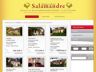 Salamandre Immobilier : Agence immobilière à Villers-Cotterets
