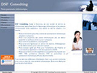 DSF Consulting, spécialiste du dépannage informatique