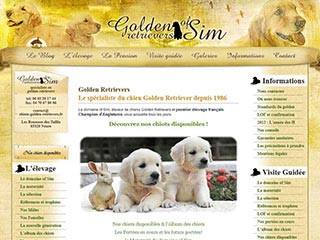 Golden Retrievers of Sim : Elevage et vente de chiots