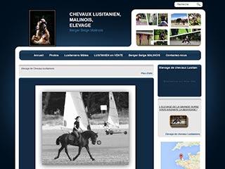 Débourrage de chevaux Lusitaniens La Grande Ourse
