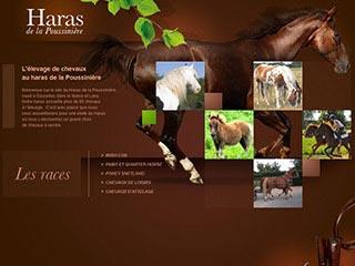Le Haras de la Poussinière : Elevage de chevaux