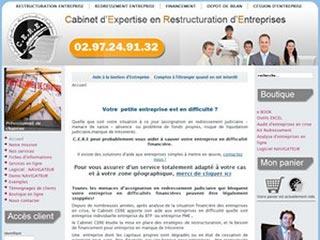 Cabinet CERE, expert en restructuration d'entreprise